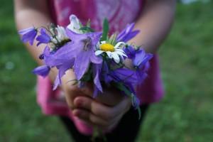 Blumen_Geschenk_pixabay_flowers-871514_1920