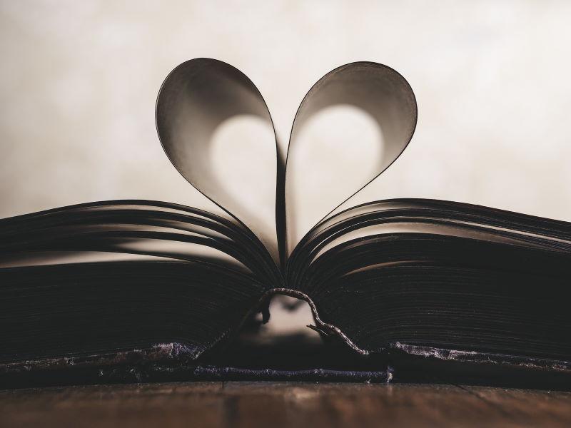 5 Bücher, die ich dir ans Herz legen möchte